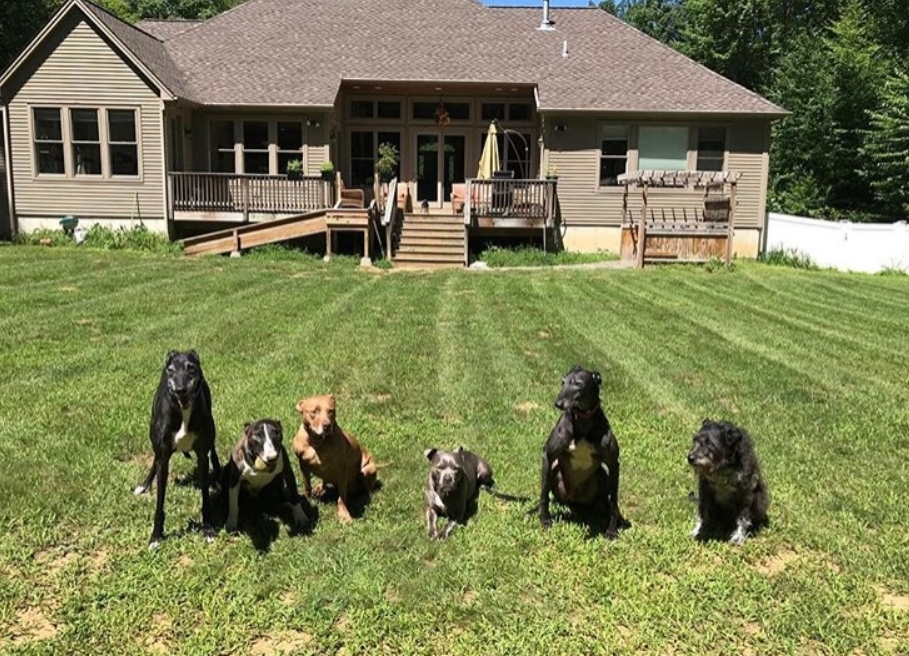 A Large Yard Makes It Possible